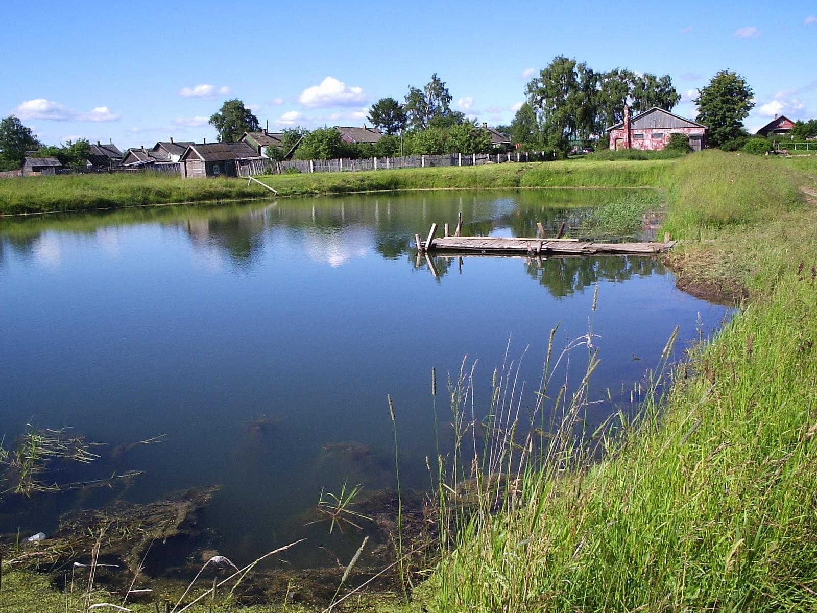 В Михайловском районе, на пруде в д. Степановка, утонул человек.